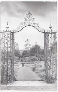 Ireland, Wicklow; The Vine Gate, Powerscourt, Enniskerry PPC, Unposted