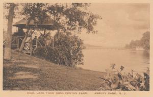 ASBURY PARK , New Jersey, 00-10s ; Deal Lake from Ross Fenton Farm