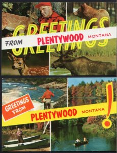 (2) Greetings From PLENTYWOOD Montana SplitView Scenery Animals - Chrome