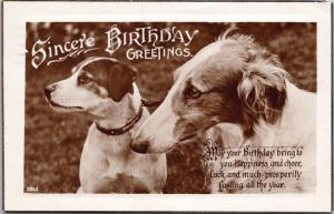 Two Dogs Sincere Birthday Greetings Dog Postcard Real Photo D65