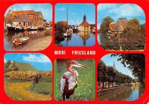 Netherlands Mooi Friesland, different views, bird, boats