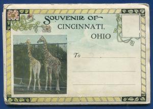 Cincinnati Ohio oh 1930s 26 views zoo Incline Railway postcard folder foldout