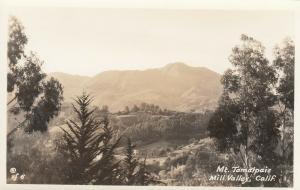 RP: MILL VALLEY , California , 1920-40s ; Mt. Tamalpais
