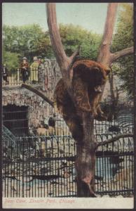 Bear Cave,Lincoln Park,Chicago,IL Postcard