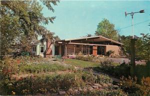Dover Ohio~The Warther Museum~Weathervane Arrow in Garden~1950s Postcard