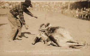 PENDLETON , Oregon, 1925 ; Female Rodeo , Fox Hastings bulldogging