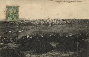 Tunisie CPA FERNANA Vue de Marche (153296)