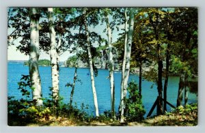 Ontario- Canada, Port Carling, Muskoka, Lakeside Mountains Trees Chrome Postcard