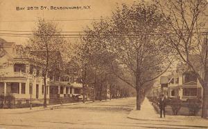 Bensonhurts New York Bay 28th Street Scene Antique Postcard K107555