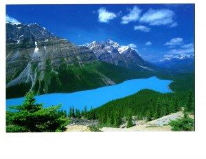 Peyto Lake, Alberta, Canadian Rockies,