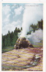 Lone Star Geyser Yellowstone National Park