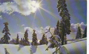 Winter Wonders North Shore Mountains British Columbia Canada