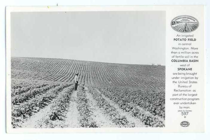 RPPC of Potato Fields in Columbia Basin West of Spokane WA