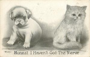 Puppy Dog Next to Kitty Cat~Honest I Haven't Got the Nerve~V Colby 1909 PC
