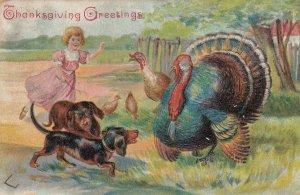 THANKSGIVING , 1907 ; Dachshunds & Turkeys