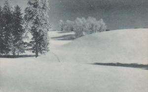 Idaho Ski Trail Near Payette Lakes Albertype
