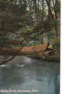 Michigan Kalamazoo Spring Brook 1909