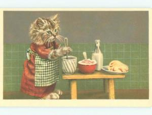foreign Pre-1980 HUMANIZED CAT WORKING IN THE KITCHEN AC6833