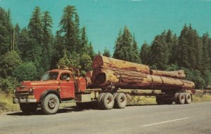 MILES CITY , Montana , 1955 ; Logging Truck
