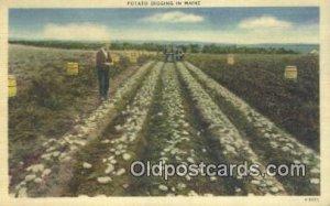 Potato Digging Farming Postcard Post Card Maine, ME, USA Unused