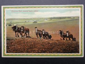 Country Scene SHIRE HORSE PLOUGHING Driving their Jocund Team Afield - Old PC