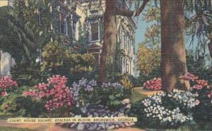 Georgia Brunswick Court House Square Azaleas In Bloom