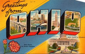 Ohio Greetings From The Buckeye State Large Letter Linen