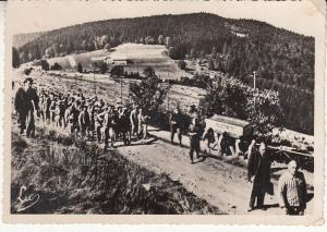 France - Struthof Concentration Camp Prisoners Unused