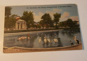 VTG Post Card - Bird House - The Chicago Zoological Park Brookfield Illinois 532