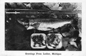 G86/ Luther Michigan Postcard c1940s Greetings from Luther Fishing Catch
