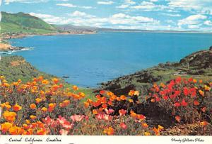Central California Coastline -
