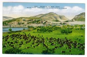 'Roundup in West Texas'  unused Kropp Linen Natural Color Postcard