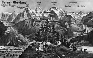 Switzerland Berner Oberland Grindelwald Eigergletscher Finsteraarhorn Postcard