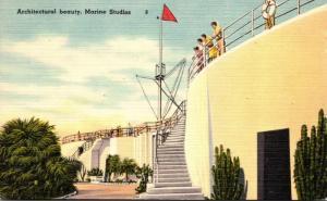 Florida Marineland Architectural Beauty Marine Studios