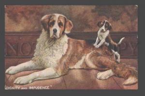 086807 PUPPY on SAINT BERNARD Dog Vintage Color PC