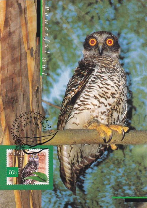 Powerful Owl, Nature Of AUSTRALIA, 1996