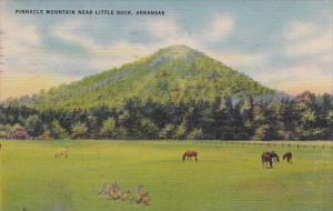 Arkansas Little Rock Pinnacle Mountain 1953