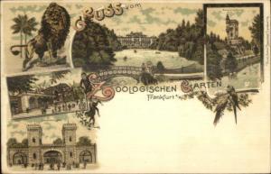 Frankfurt - Gruss Vom Zoologischen Garten - Zoo Lion c1900 Postcard