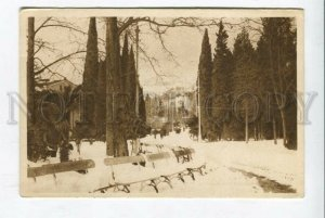 426829 RUSSIA  Yalta city garden in the snow Vintage postcard