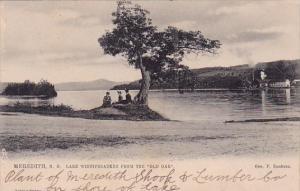 Lake Winnipesaukee From The Old Oak Meredith New Hampshire 1909