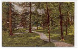 BENTON HARBOR , Michigan, 1900-1910s ; In The Glen, Eastman Springs, Benton H...