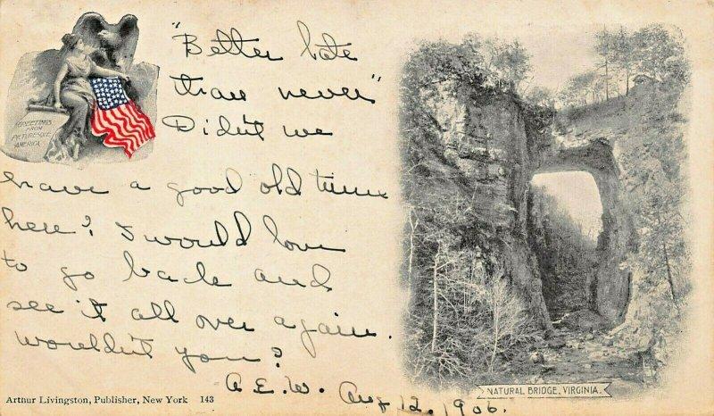 NATURAL BRIDGE VIRGINIA~VIGNETTE IMAGES~1906 CROCKETT SPRINGS VA PSTMK POSTCARD