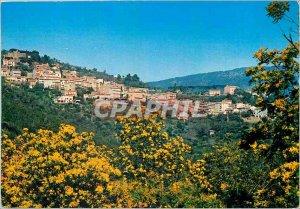 Modern Postcard The French Riviera Var Bormes Les Mimosas (Var) General view