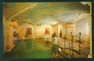 Vizcaya Art Museum SWIMMING POOL Grotto James Deering Estate House Postcard