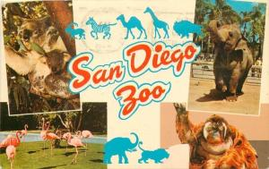 San Diego Large Letter Chrome Zoo~Koala~Indian Elephant~Flamingo~Orang-Utan~1968