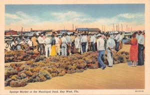 KEY WEST FLORIDA~SPONGE MARKET AT MUNCIPAL DOCK POSTCARD 1940s