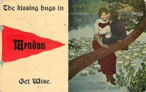 The Kissing Bugs in Mendon Illinois~Get Wise~Couple in Tree~1914 Pennant PC