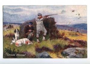 183031 Hunting grouse English SETTER dog Drummond Vintage TUCK