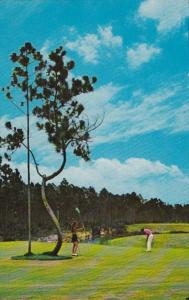 Bahamas Freeport Shannon Golf & Country Club 13th Hole