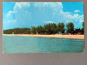 Indian Rocks Beach FL Chrome Postcard A1198085857